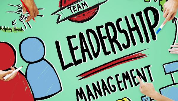 Seminare, Coachings und Leadership